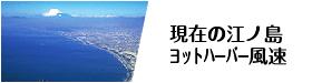 現在の江ノ島ヨットハーバー風速