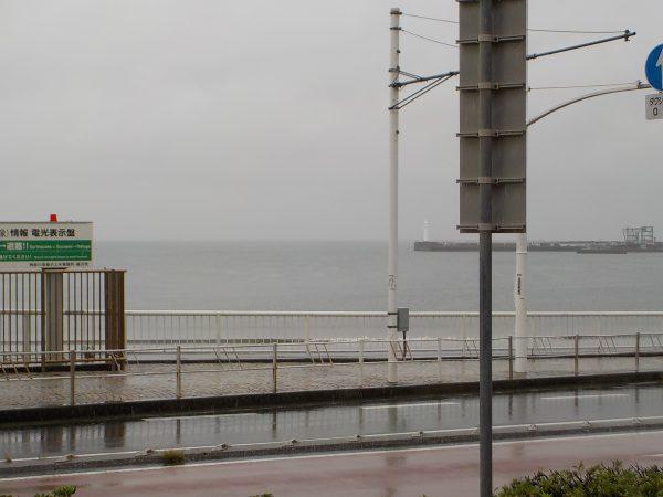 本降りの雨!