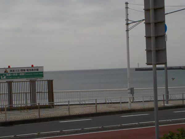 風は北東に、波は夕方に期待しましょう!